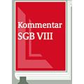 SGB VIII Kurzkommentar
