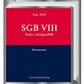 SGB VIII Kinder- und Jugendhilfe